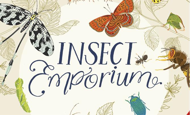 DawnC_InsectEmporium_InitialCover_Crop