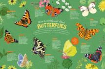 DawnC_MyVIP_Butterflies