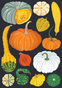 DawnC_Pumpkins_Web